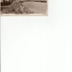 General photos