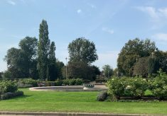 Welwyn Garden City: What I love most