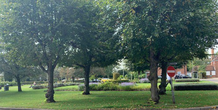 Welwyn Garden City in Vibrant Colours