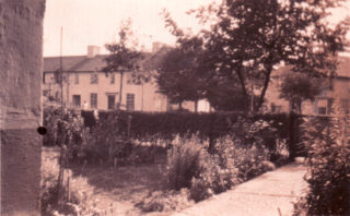 Back garden in Broadwater Road