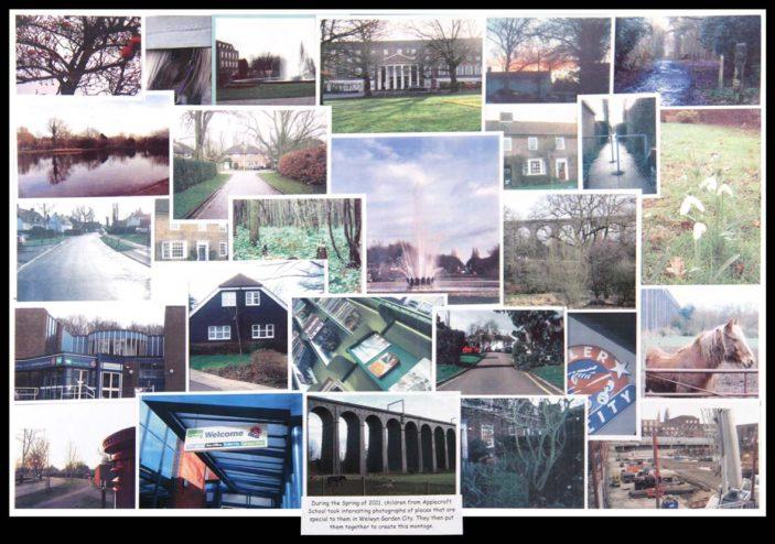 Applecroft School Collage