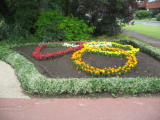 Olympic rings floral display on The Campus | Robert Gill
