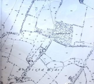 Ordnance Survey Map 1880 ref XXVIII.16 | Hertfordshire Archives and Local Studies