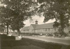 Peartree School