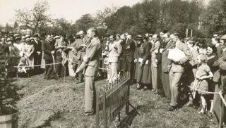 Planting the Jubilee Tree 6 May 1935 | Mill Green Museum