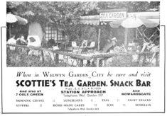 Scotties Tea Garden