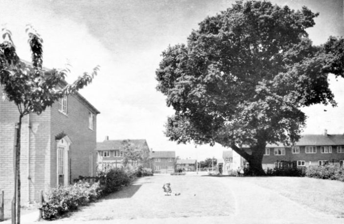 Houses in Link Field & Middlefield  - 1958.