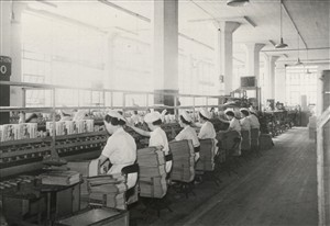 The Shredded Wheat Packing line 1930s | Hertfordshire Archives and Local Studies