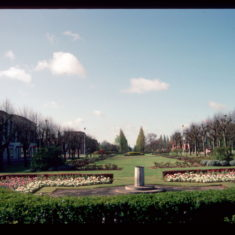 This view of Parkway is taken from the south end of Campus West and many of the poplar trees in the centre of the picture have been cut down, owing to disease and health and safety.