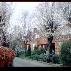 Handside Green, at the top of Handside Lane