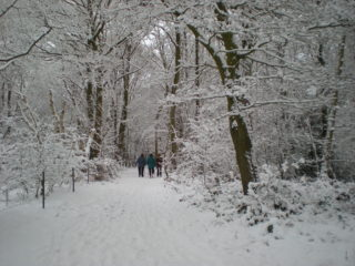 The old railway line in winter, part of the Ayot Greenway | J McCann