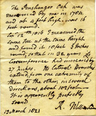 Panshanger Oak as measured by R Wilbraham 13 march 1821 | Hertfordshire Archives and Local Studies