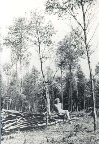 Sherrards Wood 1937 | Herts Archives & Local Studies