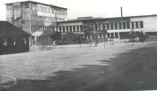 Roche Products Factory | Herts Archives & Local Studies