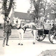 Pony and cart | Studio Lisa, Welwyn Garden City Library
