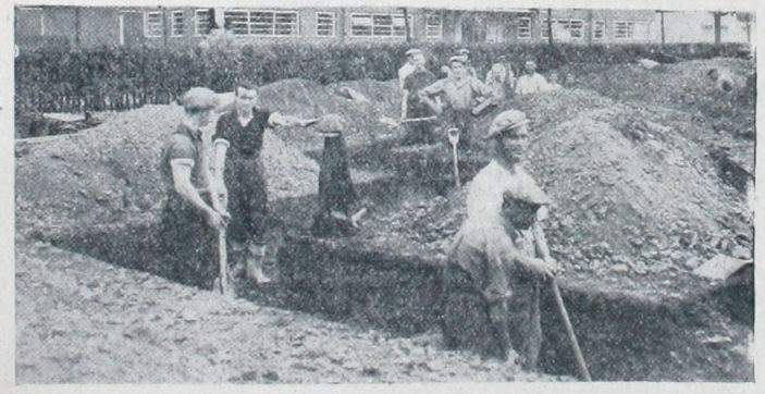 Trench digging behind Peartree Stores | Welwyn Times 29 September 1938